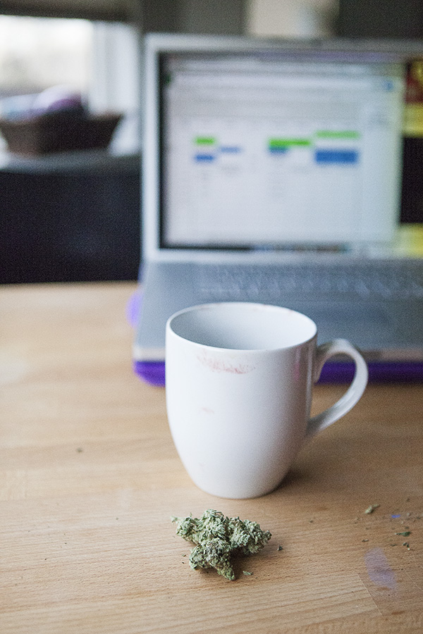 Surviving the School Years: A Stoner Mom's Morning Routine