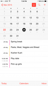 Screenshot of my Calendar on my phone.