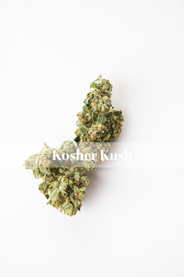 Strain Review- Kosher Kush