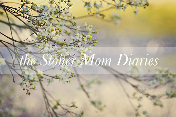 The Stoner Mom Diaries- Dorksided Things