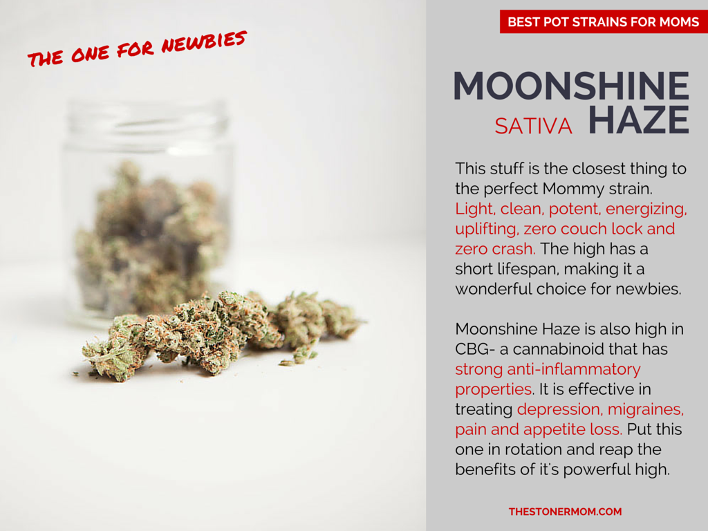 Mooshine Haze: The Best Sativa Pot Strains for Mom