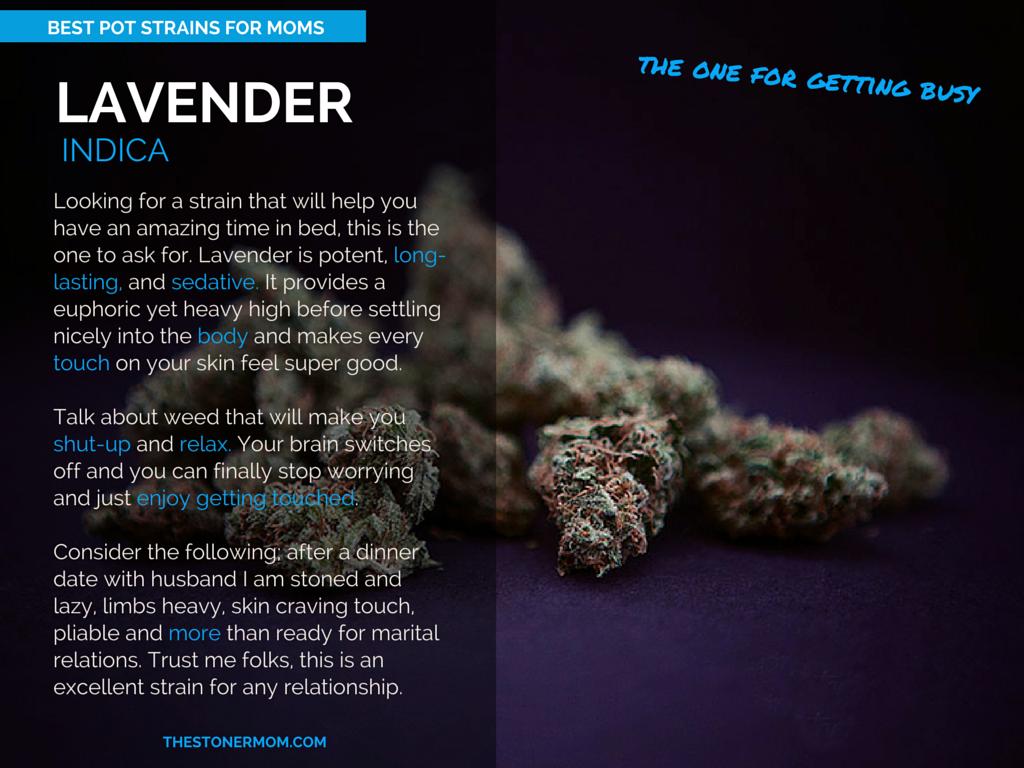 Lavender: The Best Pot Strains for Moms