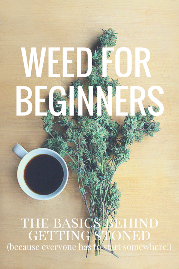 Weed For Beginners: The basics behind getting stoned (because everyone has to start somewhere!