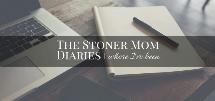 the-stoner-mom-diaries-1