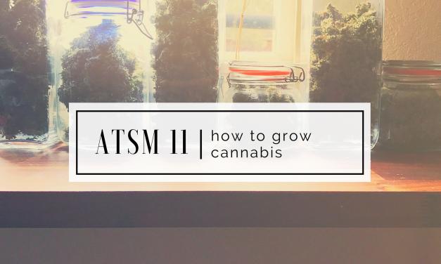 ATSM 11 | Tips on Growing Weed
