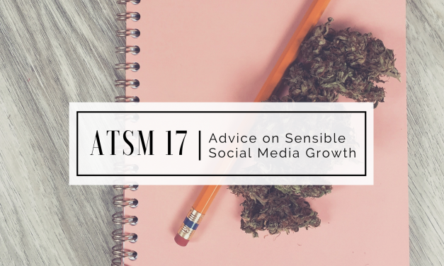 ATSM 17 | Advice on Sensible Social Media Growth