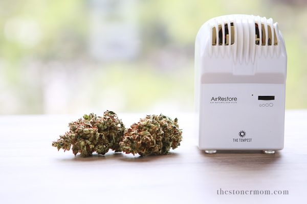 AirRestore Review | The Stoner Mom Reviews