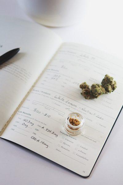 goldleaf strain journal