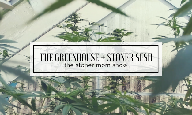 Stoner Session | Peek in our Greenhouse
