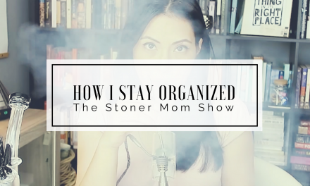 How I Stay Organized: Inside my Bullet Journal | The Stoner Mom Show
