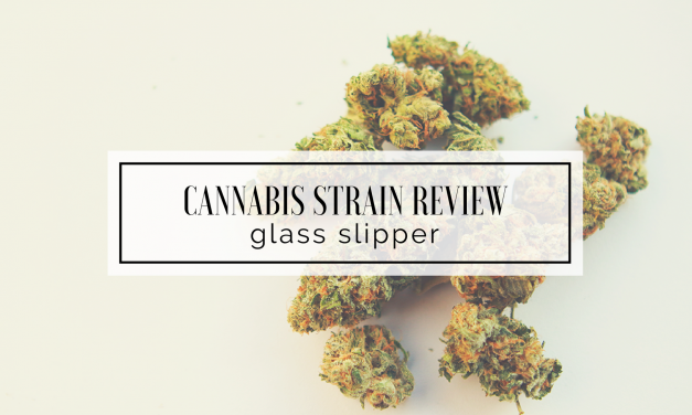 Glass Slipper | The Stoner Mom Reviews