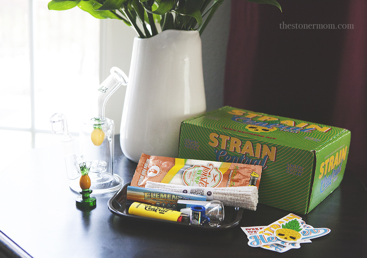 My Favorite Stoner Subscription Box | Hemper Review
