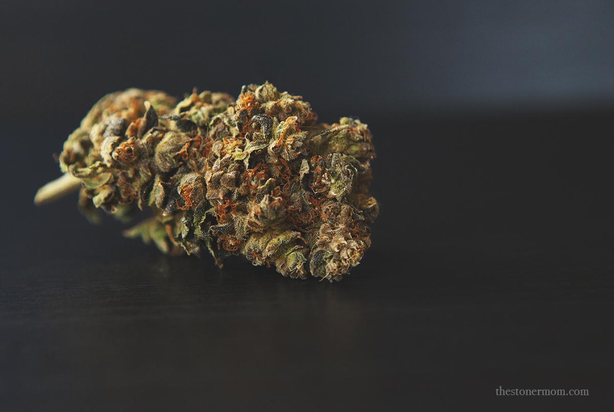 Mandarin Cookies cannabis strain nugget